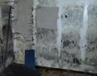 mold remediation-10
