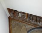 mold remediation-8