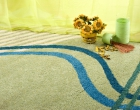 carpet cleaning brooklyn ny (2)